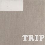 Trippin' (LLC) crop
